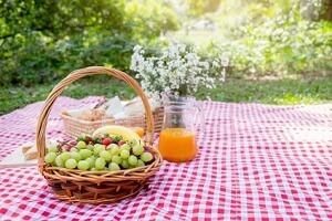 Gute Picknickdecke kaufen